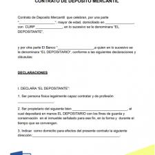 modelo-contrato-deposito-mercantil-ejemplo-formato