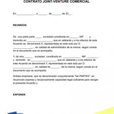 modelo-contrato-joint-venture-ejemplo-formato