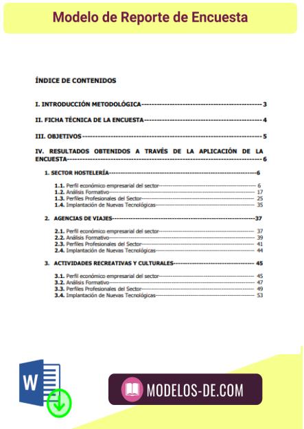 modelo-reporte-encuesta-ejemplo-formato