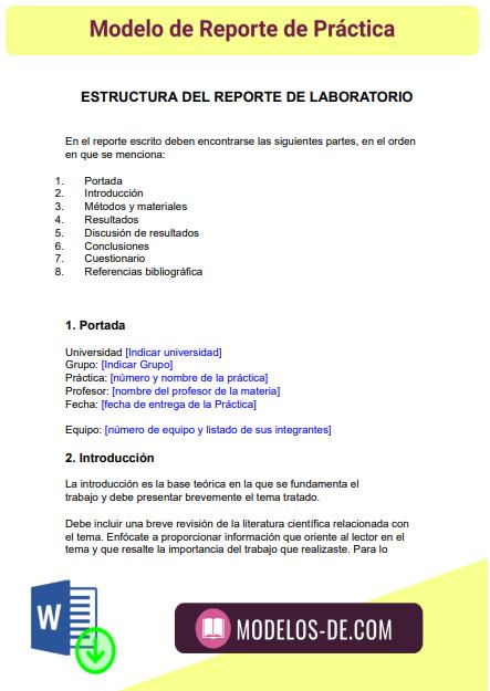 modelo-reporte-practica-ejemplo-formato